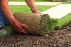 7-landscaping-tips-1-1200x565